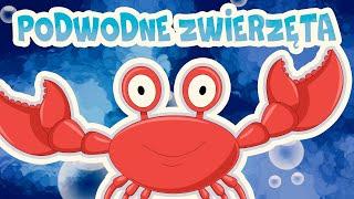 Podwodne zwierzęta - bajki dla niemowląt