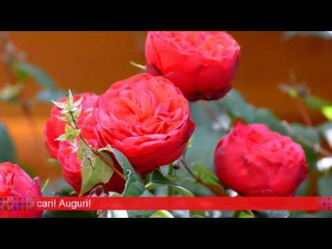 Auguri Di Buon Compleanno Nonna 90 Anni.Auguri Buon Compleanno 90 Anni Di Giovanni Tomarchio Youtube