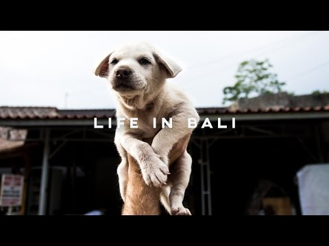 LIFE IN BALI // #PackMoreIn