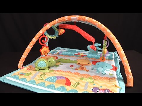 Wigglin' Play Gym From Fisher-Price