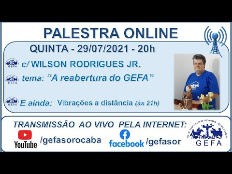Assista: Palestra Online - c/ WILSON RODRIGUES JR. (29/07/2021)