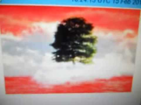 OD5ZZ- Walid Karami- Tripoli - LEBANON - 16:30 utc - 15-Feb-2014 - 17 meters band
