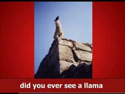Llama Song (with official MP3)
