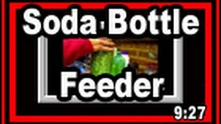 Soda Bottle Bird Feeder - Wisconsin Garden Video Blog 359