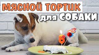 Мясной торт для собаки: простой рецепт