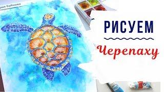 Скетчинг для начинающих. Уроки рисования. Как нарисовать черепаху?