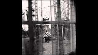 'Fine Line' - PaulMcCartney.com Track of the Week