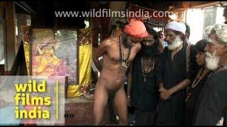 Repeat youtube video Nanga baba performing the penis trick!