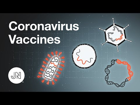 Coronavirus Vaccines - An Introduction