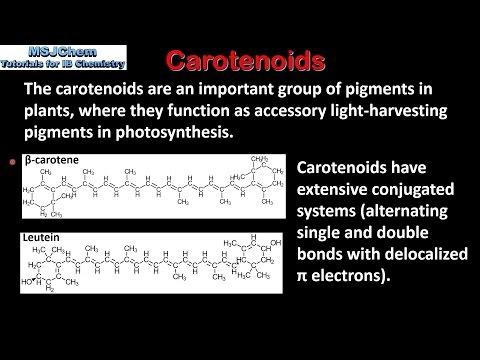 B.9 Carotenoids (HL)