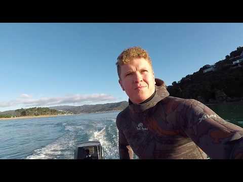 Winter Gathering Coromandel New Zealand