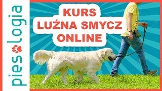 Kurs Luźna Smycz Online