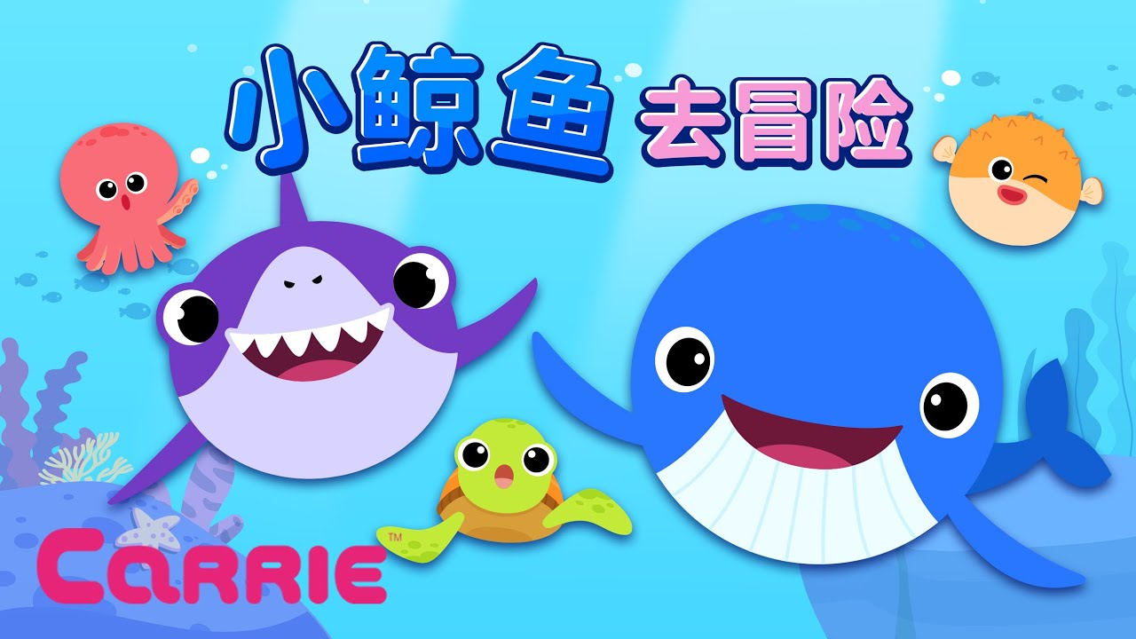 小鲸鱼去冒险 | 鲸鱼 | 动物儿歌 | 凯利童谣 | Go! Ready! Whale song l Baby whale song l Sea animals song