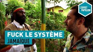 Fuck le système : En Jamaïque, chez les rastas - L'Effet Papillon - CANAL+