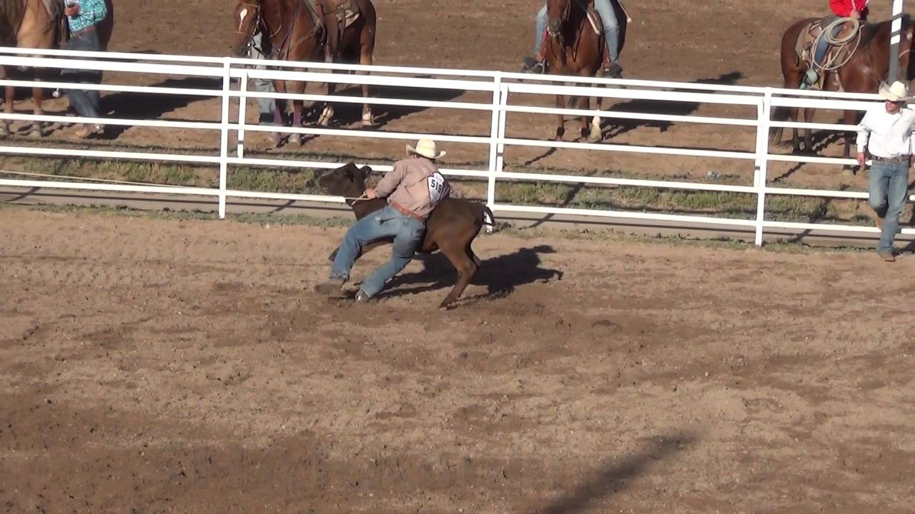 Illegal Calf Jerk Downs Allowed At 2016 Cfd Rodeo Youtube