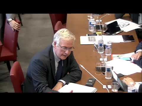 Audition de M. Pierre Moscovisi, commissaire européen