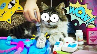 Кот Мася в больнице у доктора ветеринара (Кот и врач)