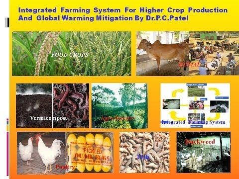 Integrated Farming System For Higher Crop Production And Global  Warming Mitigation By Dr.P.C.Patel