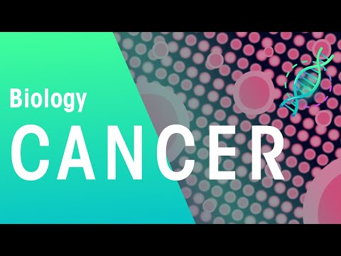 What Is Cancer? | Biology for All | FuseSchool