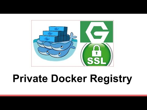 Setup Private Docker Registry: password protected and over https