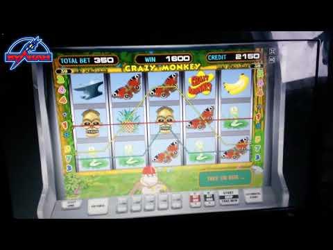 Новая тактика игры в лучший игровой автомат Обезьяна. Казино онлайн рулетка на деньги рубли.
