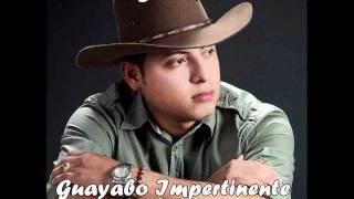 Carlos Niño - Guayabo Impertinente