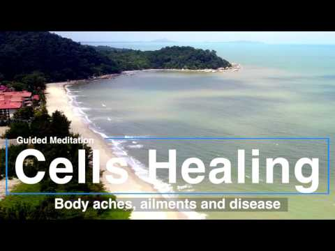 Cells healing the Body - New Guided meditation