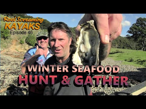 Winter Hunt And Gather Seafood Kayak Fishing New Zealand - RSK Ep 46