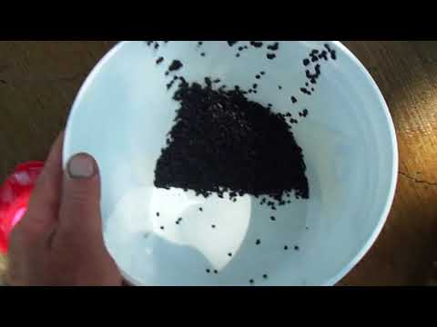 MGB Charcoal Canister Cleaning