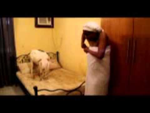 Chika Ike makes love with a ram for Occultic powers