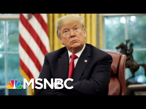 A Look Back At How Mueller's Probe Has Shaped Donald Trump's Presidency | The 11th Hour | MSNBC