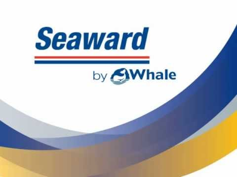 Whale launches Seaward by Whale