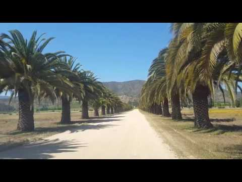 Viña Indomita - Press Trip Chile