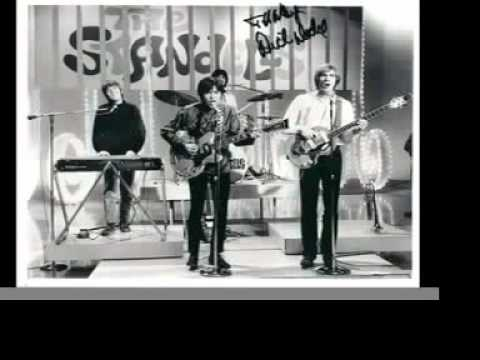 The Standells - Why Pick On Me
