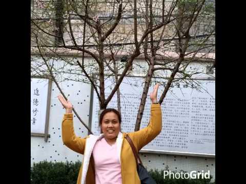 MY HOLIDAY VACATION AT GUANGZHOU CHINA PART 1 2014