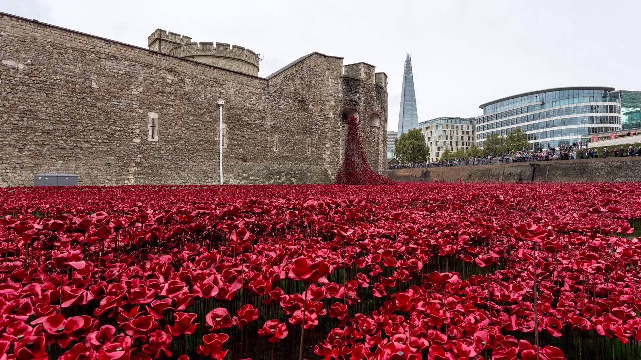 Over 800000 handmade ceramic poppies spew from the Tower of London in artist Paul Cummins' 'Blood Swept Lands and Seas of Red' installation. Each poppy represents the life of a British and commonwealth soldier lost in the First World War.