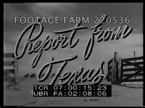 1940s: Texas Cowboys, Oil, Cattle 220536-01 | Footage Farm
