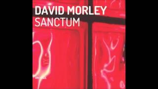 David Morley - Nimue