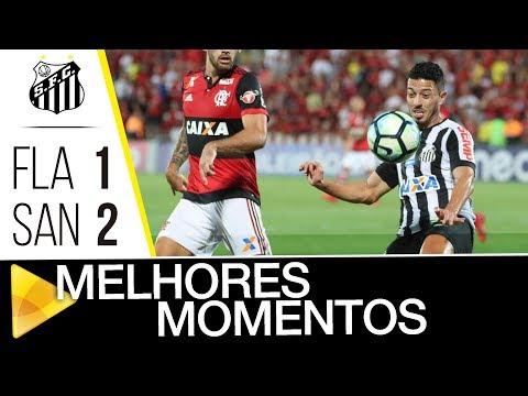 Flamengo 1 x 2 Santos | MELHORES MOMENTOS | Brasileirão (26/11/17)