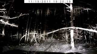 Санта Снег Ночь Люстра Автоориентирование