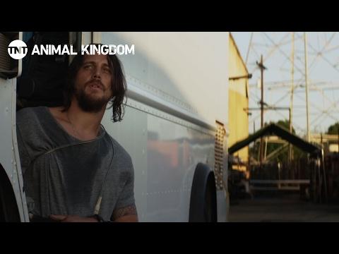 Animal Kingdom: Secrets - Season 1, Ep. 2 [CLIP #1] | TNTKaynak: YouTube · Süre: 1 dakika27 saniye