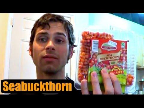 Does Seabuckthorn Really Work? - Weird Fruit Explorer - Ep. 69