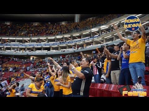 INVASIÓN FELINA   CHIVAS VS TIGRES   Clausura 2018 (Estadio Akron)