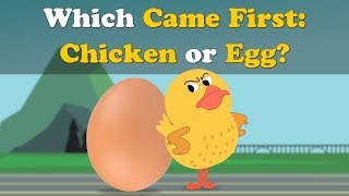 Which Came First : Chicken or Egg? | #aumsum #kids #science #education #children