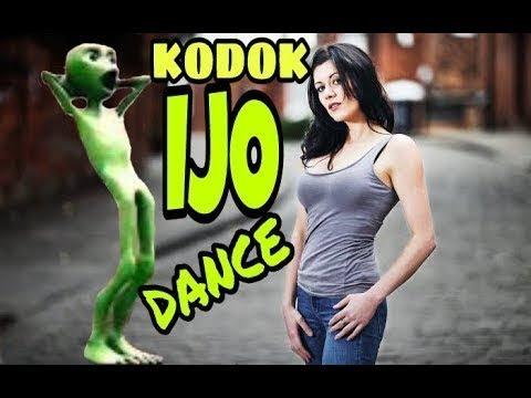 Dance Kodok Ijo Challenge /Musicaly Lucu Abis