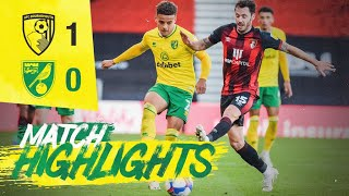 HIGHLIGHTS   AFC Bournemouth 1-0 Norwich City