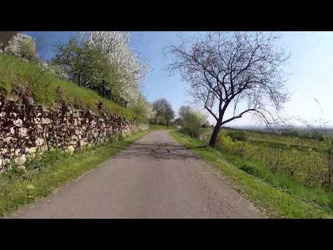 demovideo-des-rlv-mandelpfad