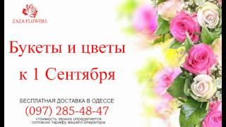 Zaza Flowers - цветы к 1-му сентября(, 2013-08-21T16:54:37.000Z)