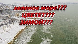 #АНАПА - МОРЕ ЗАЦВЕЛО?! ЗИМОЙ?! - СНЕЖНАЯ СКАЗКА - Пляж Кавказ - январь 2019