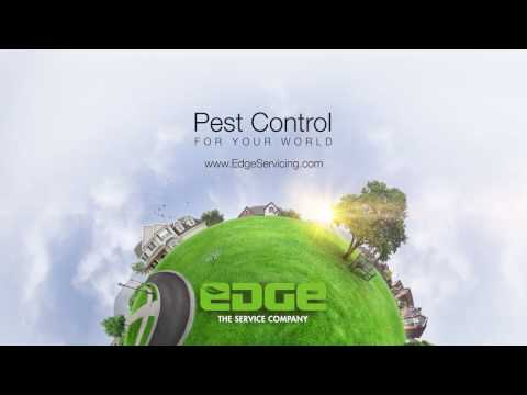Pest Control for Your World